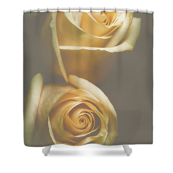 The Soft Shadows Shower Curtain