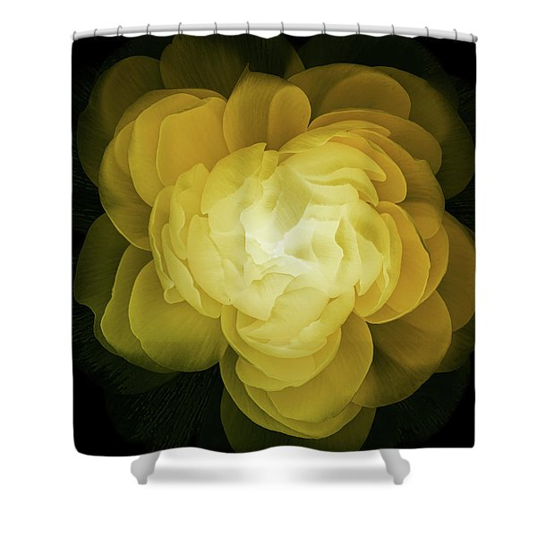 The Sorceress Number Two Shower Curtain