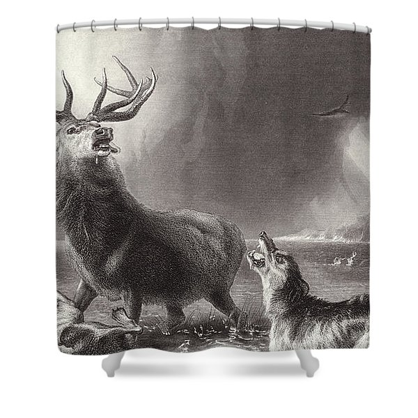 The Stag At Bay Shower Curtain