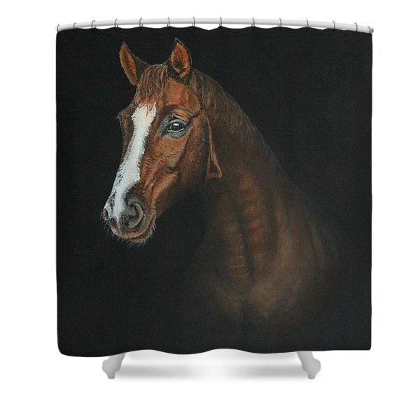 The Stallion Shower Curtain