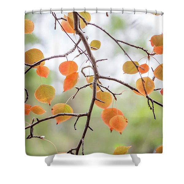 The Start Of Fall Shower Curtain