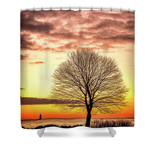 Shower Curtain featuring the photograph The Tree by Jeff Sinon