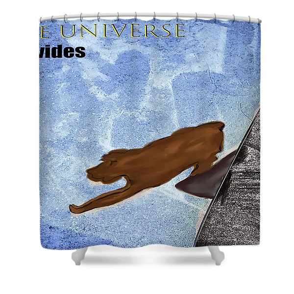The Universe Provides Shower Curtain