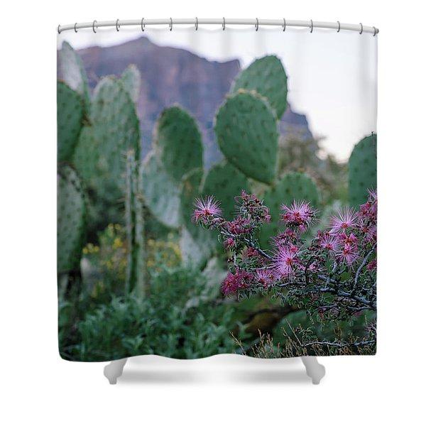 The Vibrant Desert Shower Curtain