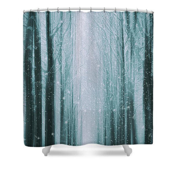 The Winter Wood Shower Curtain