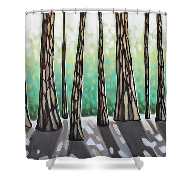 Look Beyond The Shadows Shower Curtain