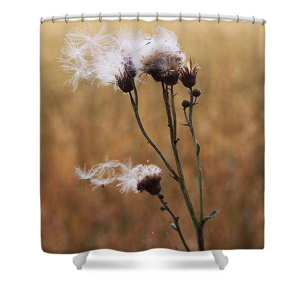 Thistle Down Shower Curtain