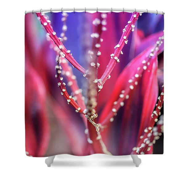 Thorns  Shower Curtain