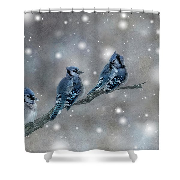 Three Blue Jays In The Snow Shower Curtain