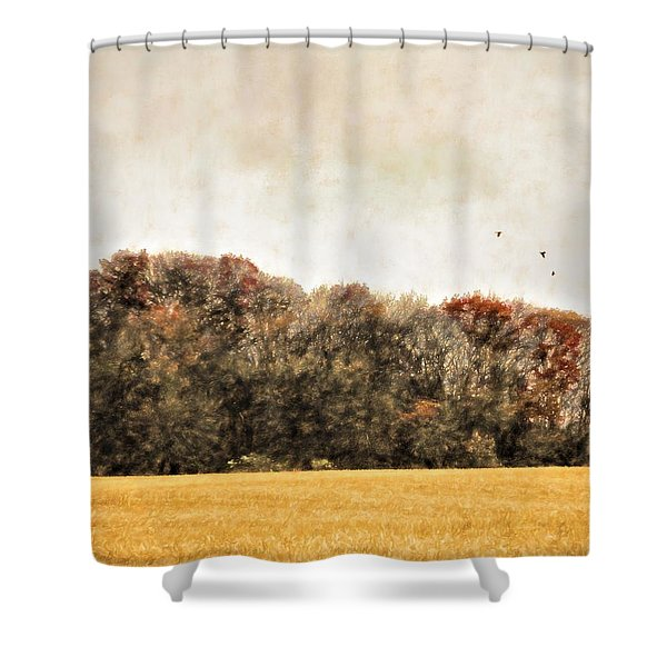 Three Crows And Golden Field Shower Curtain