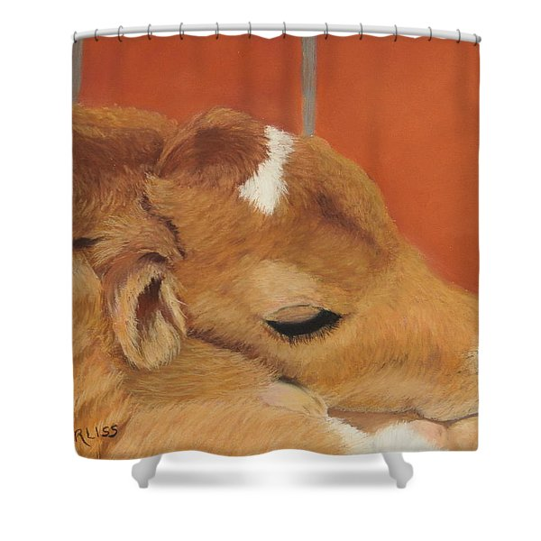 Three Hours Old Shower Curtain