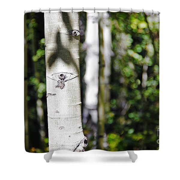 Through The Aspen Forest Shower Curtain