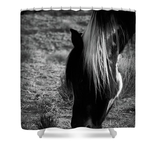 Shower Curtain featuring the photograph Tierra by Catherine Sobredo