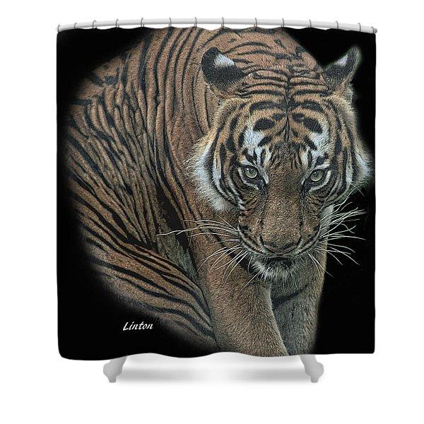 Tiger 6 Shower Curtain