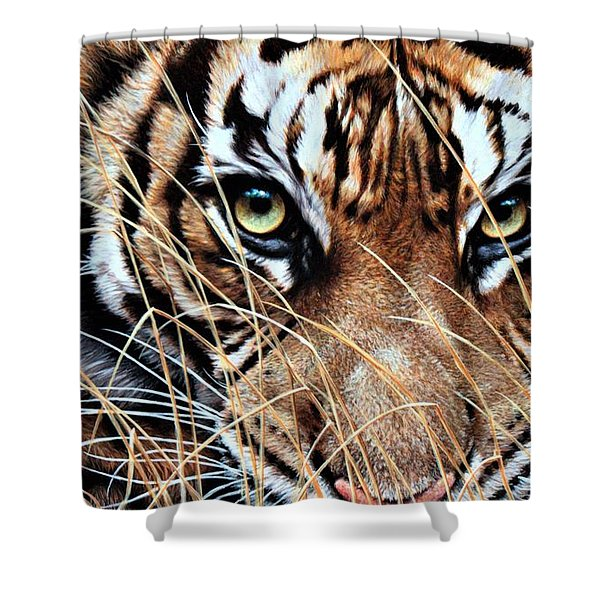 Shower Curtain featuring the painting Tiger Eyes By Alan M Hunt by Alan M Hunt