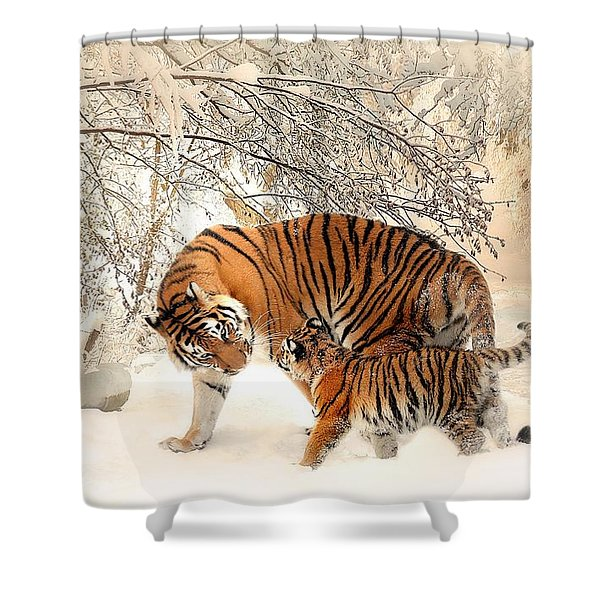 Tiger Family Shower Curtain