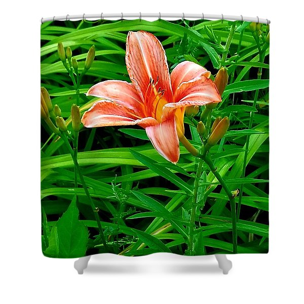 Tiger Lily Shower Curtain