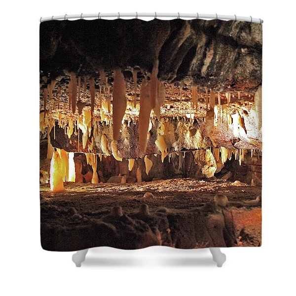Tight Crawl Shower Curtain