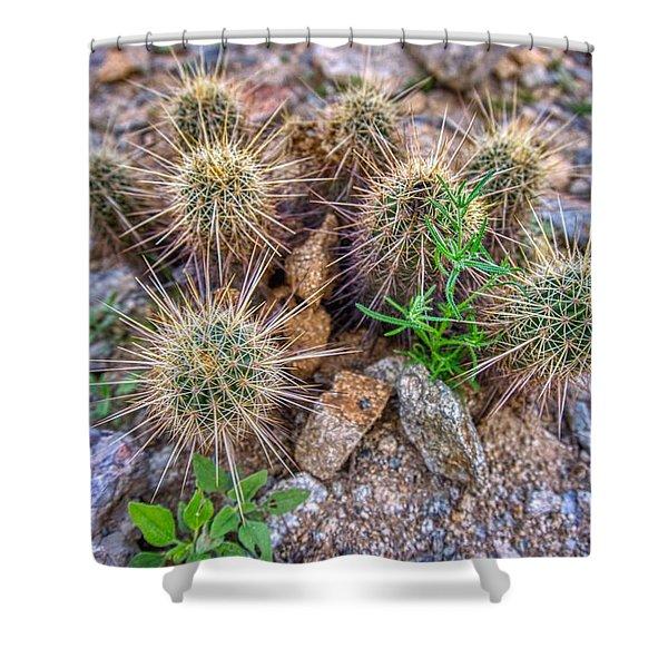 Tiny Cactus Shower Curtain
