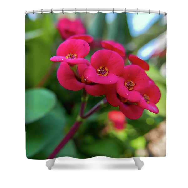 Tiny Red Flowers Shower Curtain