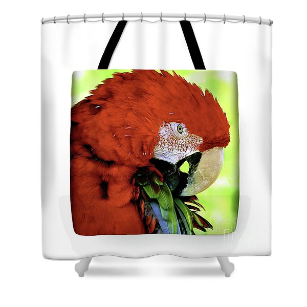 Tote Bags Shower Curtain