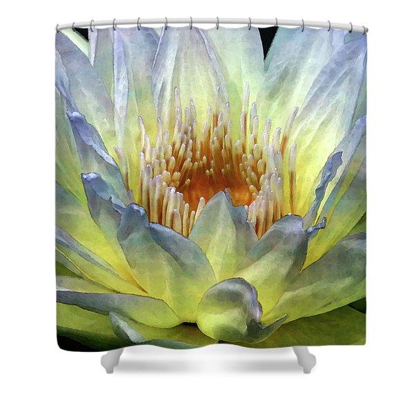 Touch Of Lemon 4504 Idp_2 Shower Curtain