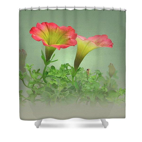 Trailing Petunia Shower Curtain