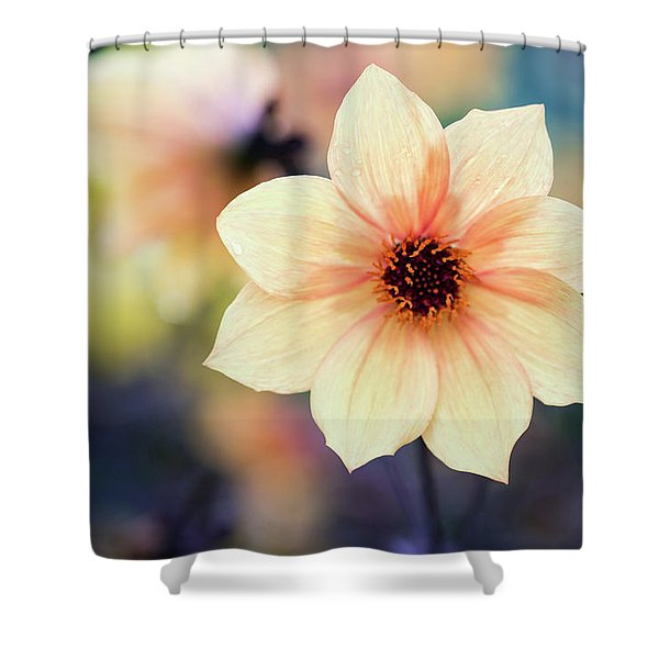 Shower Curtain featuring the photograph Transport Me To Summer by Emily Johnson
