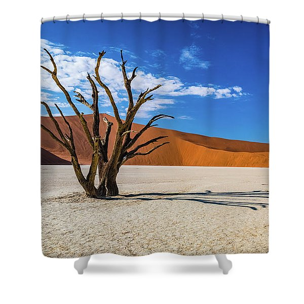 Tree And Shadow In Deadvlei, Namibia Shower Curtain