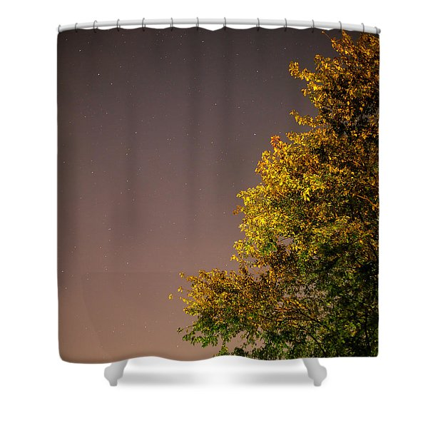Tree And Stars Shower Curtain