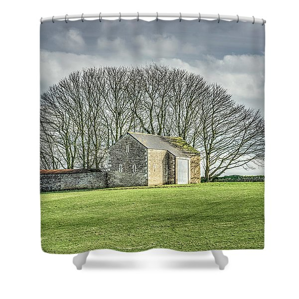 Tree Fan Shower Curtain