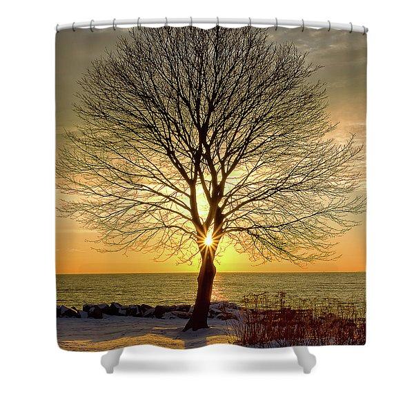 Tree Framed Sunrise New Hampshire Shower Curtain