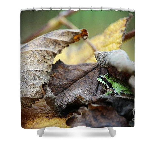 Tree Frog Seeking Shelter Shower Curtain