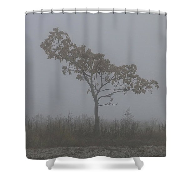 Shower Curtain featuring the photograph Tree In Fog by William Selander