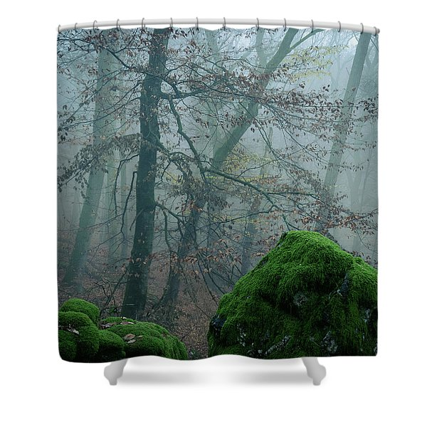 Tree On The Rocks Shower Curtain