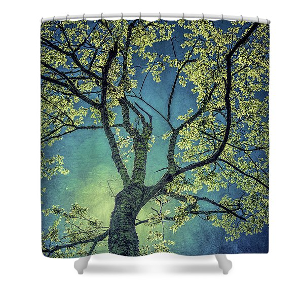 Tree Tops 0945 Shower Curtain