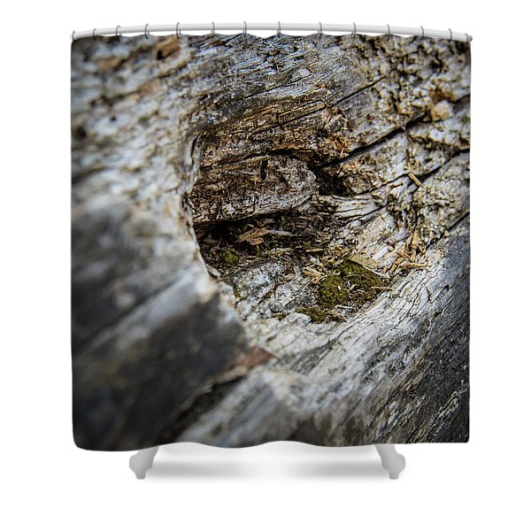 Tree Wood Shower Curtain
