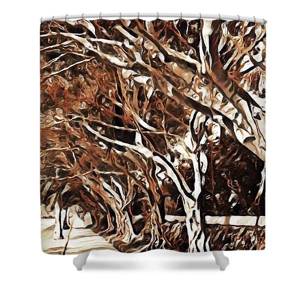 Treelined Shower Curtain