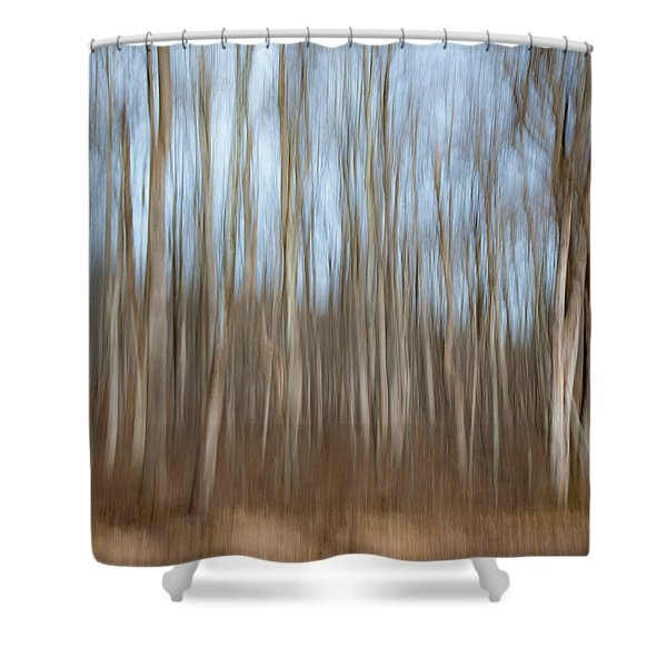 Trees In The Forest Shower Curtain