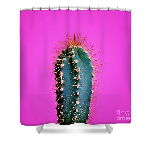 Trendy Neon Cactus Closeup Over Bright Pink Pastel Background. C Shower Curtain