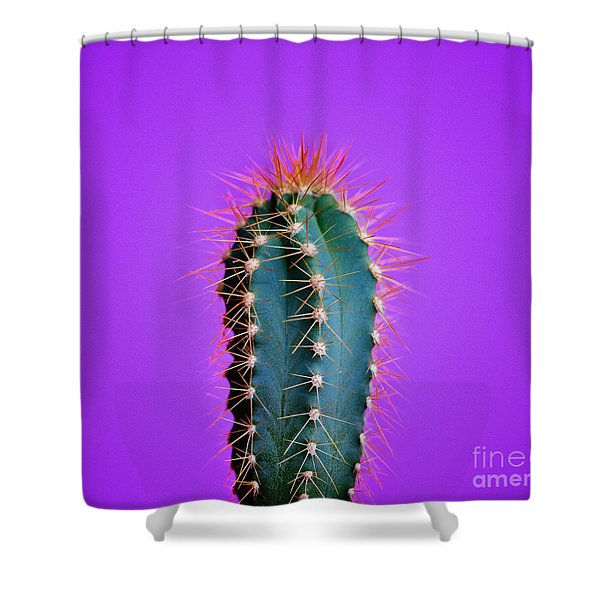 Trendy Neon Cactus Closeup Over Bright Purple Pastel Background. Shower Curtain