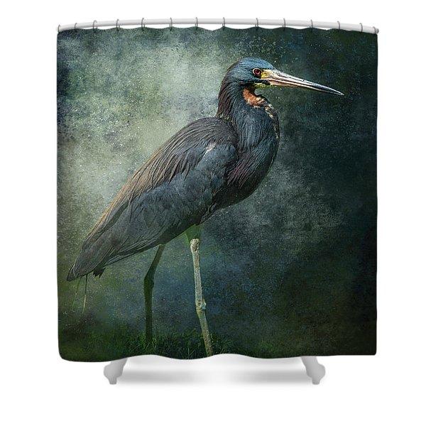Tricolor Portrait Shower Curtain