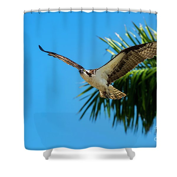 Tropical Flight Shower Curtain