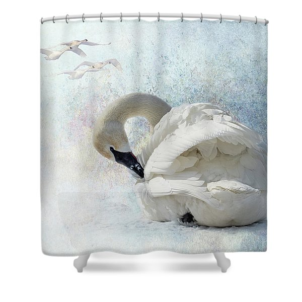 Shower Curtain featuring the photograph Trumpeter Textures #2 - Swan Preening by Patti Deters