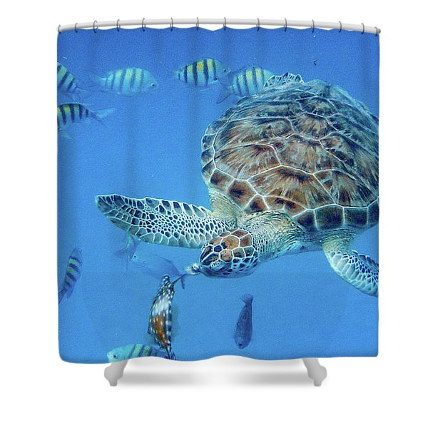Turning Turtle Shower Curtain