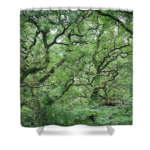 Twisted Forest Full Color Shower Curtain