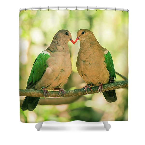 Two Colourful Doves Resting Outside On A Branch. Shower Curtain