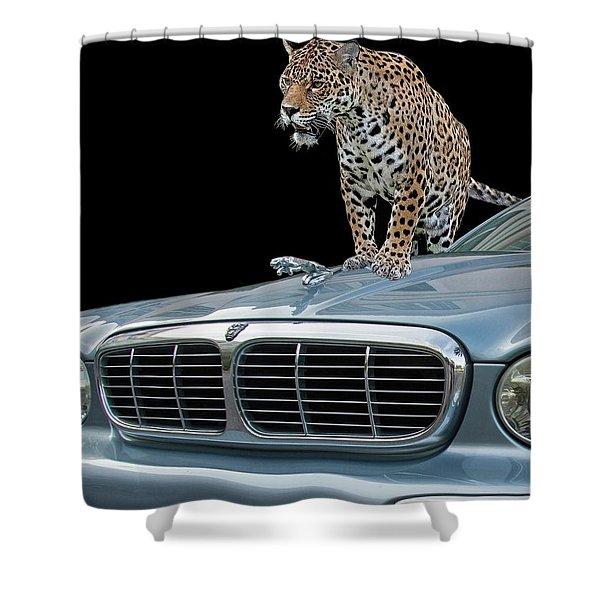 Two Jaguars 1 Shower Curtain