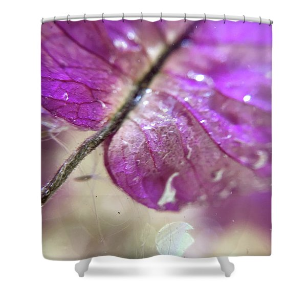 Tymp Shower Curtain