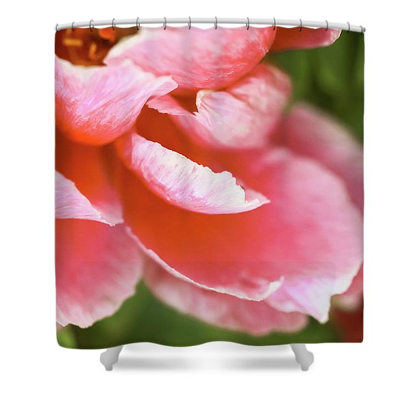 Shower Curtain featuring the photograph Unfurling Awe by Emily Johnson